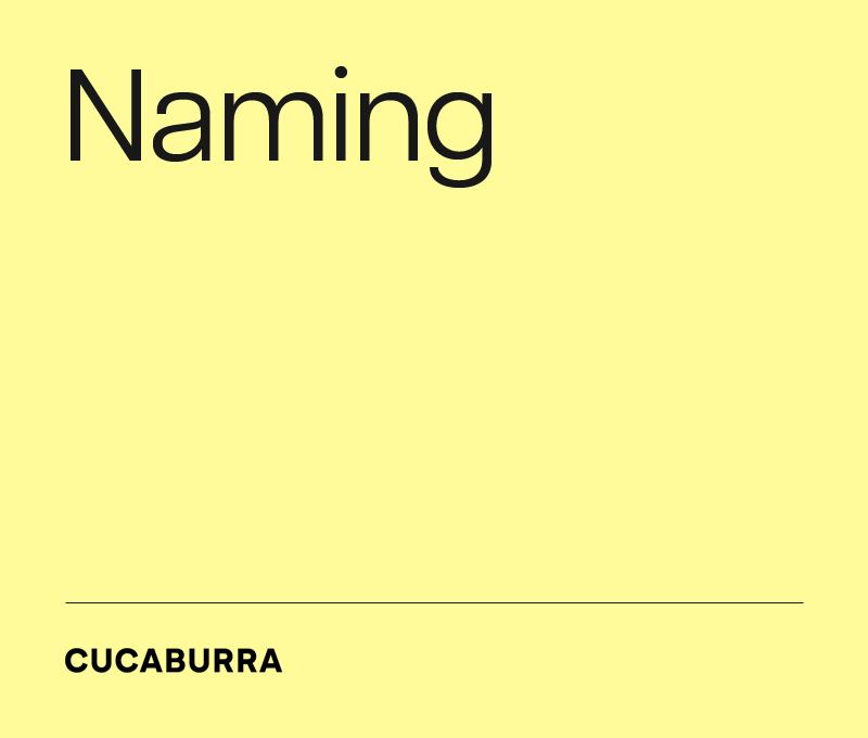 Naming - nazwa dla firmy i marki